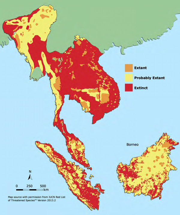 Vulneralbe Status and Distribution of Malayan Sun Bear